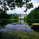 Johnstown Castle by brianboyce50