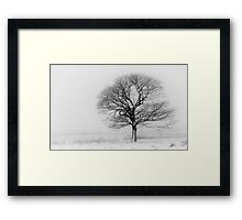 Solitude in winter Framed Print