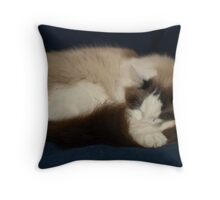 Oscar Sleeping Throw Pillow