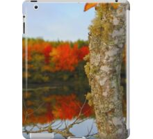Beauty and the Birch iPad Case/Skin