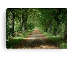 Autumnal Lane Canvas Print