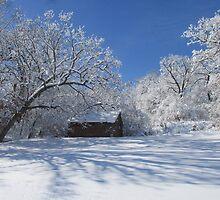 Winters  Shed by Linda Miller Gesualdo