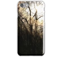 Sunny spells in St James Park iPhone Case/Skin