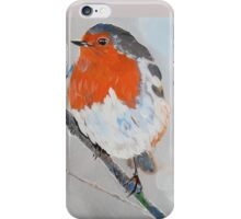 Robin on a Snowy Branch iPhone Case/Skin