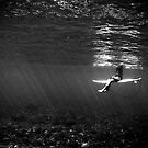Serenity by Rae Marie Threnoworth