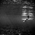 Serenity by Rae Threnoworth
