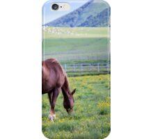 Wild Horses 04 iPhone Case/Skin