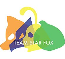 Team Star Fox Photographic Print