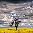 Australia Landscapes by Victor Pugatschew