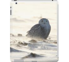 Sole survivor iPad Case/Skin