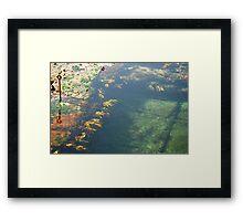 Bogey Hole - Newcastle Beach Framed Print