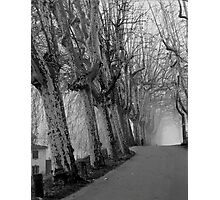 December - Lucca Photographic Print