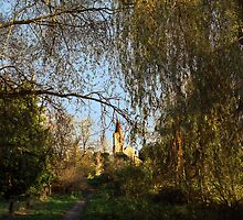 Twyford St. Mary Church from Berry Bridge, Twyford by Christopher Newberry