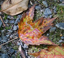 Earth's Soliloquy of Fall (#1) by Augustus
