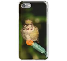 Pacific Northwest Holiday Decorations iPhone Case/Skin