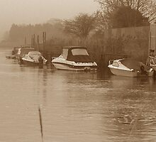 Early morning on the Arun by Charlotte Jarvis