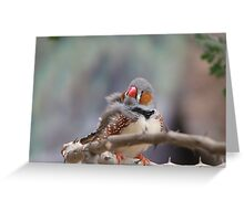 Zebra Finch Greeting Card