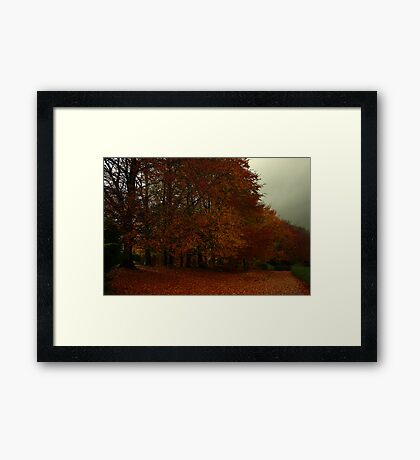 Compton Down Framed Print