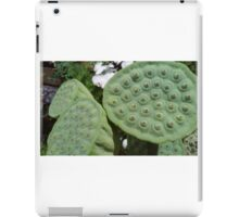 South-east Asian Lotus heads with seeds iPad Case/Skin