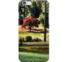The Little Red Maple iPhone Case/Skin