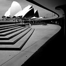 Sydney Opera House curves by Sheila  Smart