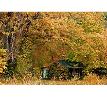 Smothered Cottage Photographic Print