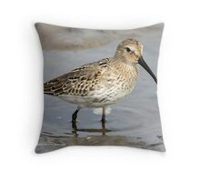 My first Dunlin Throw Pillow