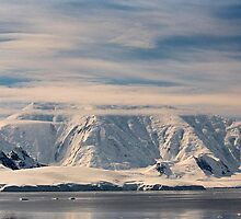 Icy wonderland by Rosie Appleton