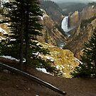 Upper Yellowstone Falls by Dennis Jones - CameraView