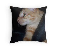 Playful One Throw Pillow