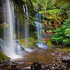 Russell Falls by John Lambert