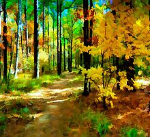 Deep In The Woods of Light & Color by JohnDSmith