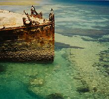 Heron Island Shipwreck, Australia by Shaina Haynes