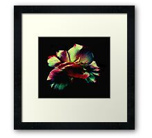 Somehow...   Framed Print