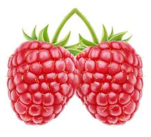 Raspberry #2 by 6hands