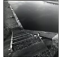 canal • dijon, burgundy • 2008 Photographic Print