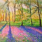 Bluebell wood by lizzyforrester