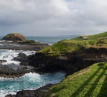 "The ""Nobbies"", Phillip Island by John Lambert"