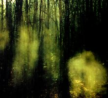 Apparitions by Marie Monroe