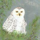 snow owl by Dawn B Davies-McIninch