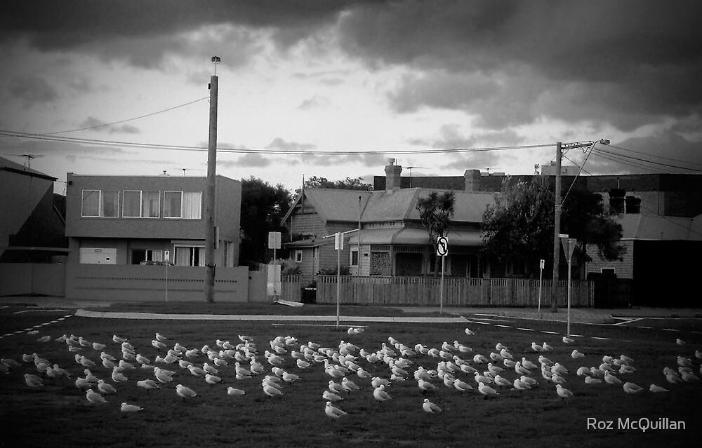 The Birds! by Roz McQuillan