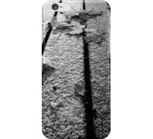 Leaves and Snow iPhone Case/Skin