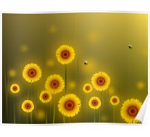 * sunflower field * Poster