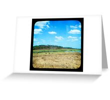 Buffulo Country Greeting Card