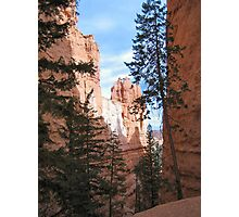 Scenic Ravine, Bryce Canyon National Park Photographic Print