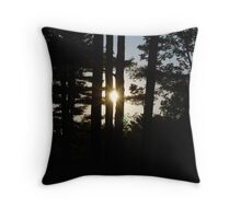 Seeing the Light... Throw Pillow