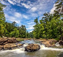 Sweetwater Creek I by Bernd F. Laeschke