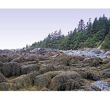 Evergreen Cliffs Photographic Print