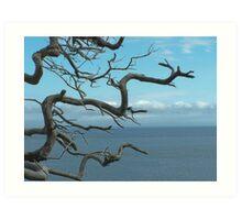 Ocean Branches Art Print