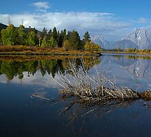 Oxbow Reflections by Dennis Jones - CameraView